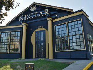 Nectar Beaverton Regatta